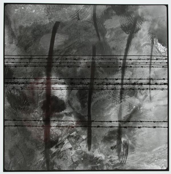 Auschwitz 024