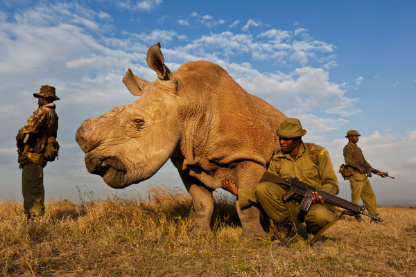 Brent Stirton / Reportaż Getty Images