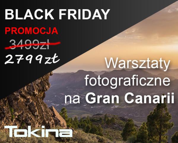 Black_Friday1