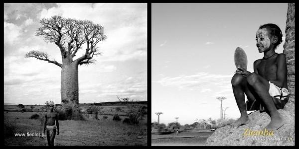Wycieczka na Madagaskar sto lat później-fot. A.Fiedler i A.Ziemba (10)z